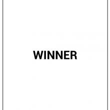 winner - kopie